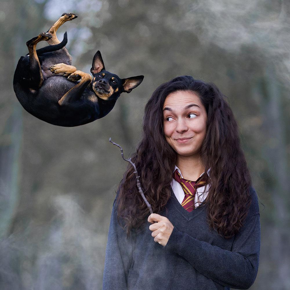 Hund schwebt durch Magie in der Luft